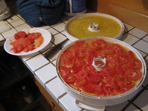 I try to put as many tomato slices as I can per rack.  They'll shrink quite a bit during the drying phase.